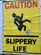 Slippery Life